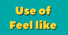 Use of feel like